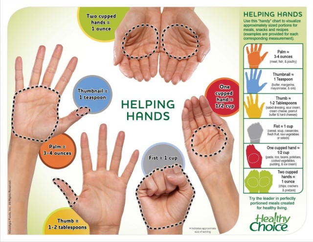 hw_handportionchart_1222-1024x791